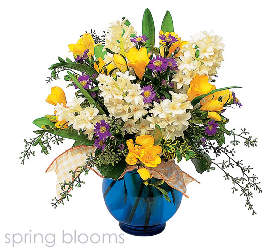 Fresh bright blooms from Hafner Florist, your florist in Sylvania and Holland, Ohio