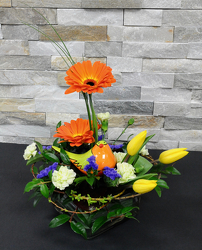Charming Chirp from Hafner Florist in Sylvania, OH