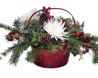 Holiday Pine Tree Basket from Hafner Florist in Sylvania, OH