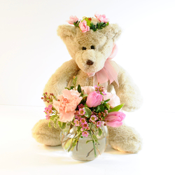 Princess Bear from Hafner Florist in Sylvania, OH