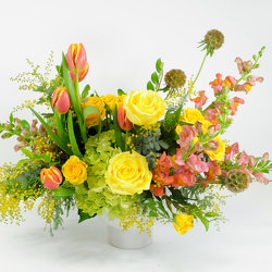 Sun-kissed from Hafner Florist in Sylvania, OH