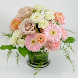 Blush from Hafner Florist in Sylvania, OH