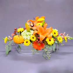 Warm Fall Wishes from Hafner Florist in Sylvania, OH