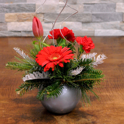 A Little Christmas from Hafner Florist in Sylvania, OH