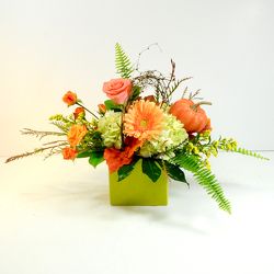Happy Fall from Hafner Florist in Sylvania, OH
