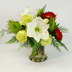 Classic Color Trio from Hafner Florist in Sylvania, OH