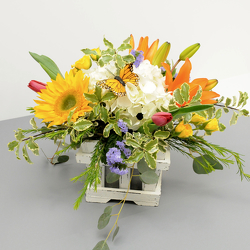Country Sunshine from Hafner Florist in Sylvania, OH