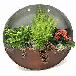 Holiday Wall Planter from Hafner Florist in Sylvania, OH
