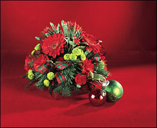 Christmas Wish from Hafner Florist in Sylvania, OH