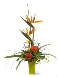 Tropical Getaway from Hafner Florist in Sylvania, OH