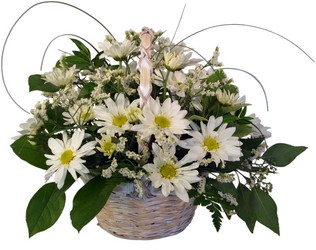 Make Someone's DAY-isy! from Hafner Florist in Sylvania, OH