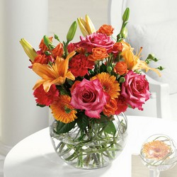Contemporary Collection from Hafner Florist in Sylvania, OH